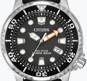 Promaster Diver Dial