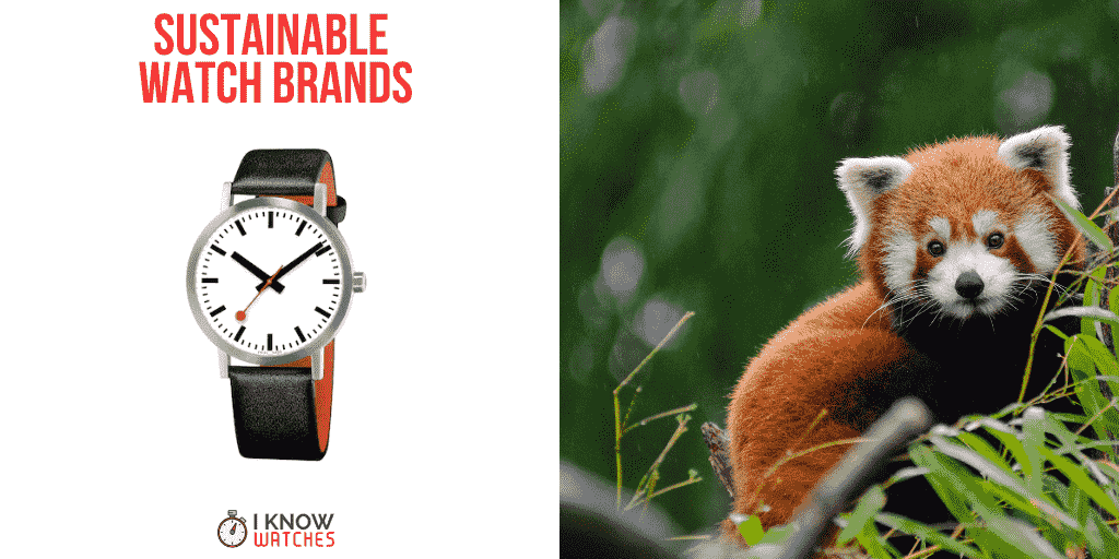 sustainable eco-friendly watch brands